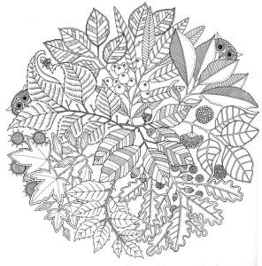 Mandala e le foglie